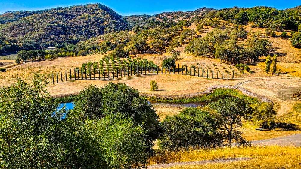 Mendocino Countryside