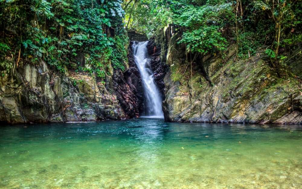 Paria Waterfall Trinidad
