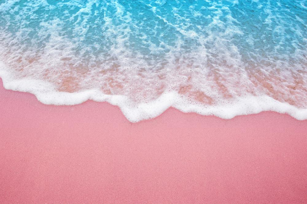 Pink Sand Beach Bermuda