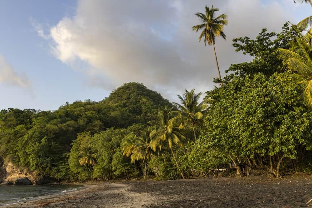 Anse Ceron, Martinique