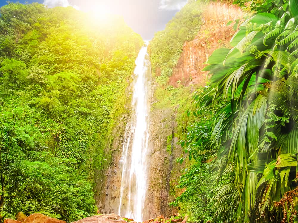 Carbet Falls Guadeloupe