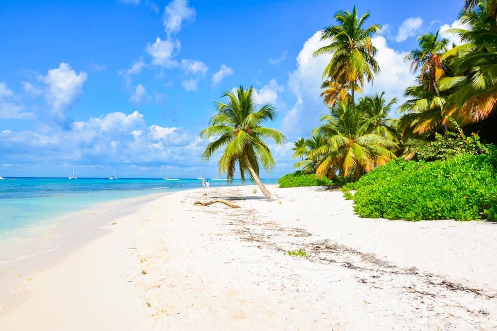Gelee Beach Haiti
