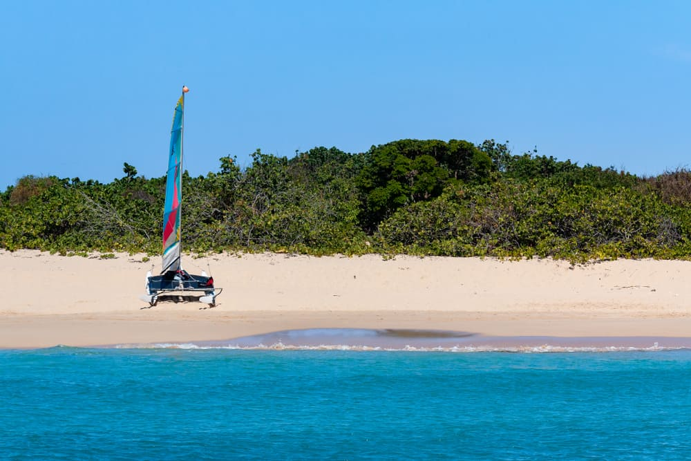 Tintamarre Island Saint Martin